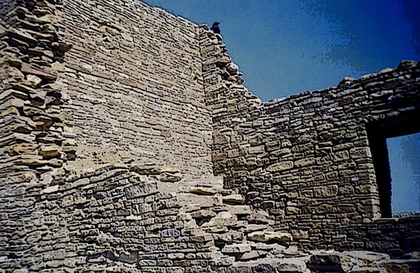 Chaco Canyon raven