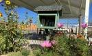 free lending library Belen Community Garden